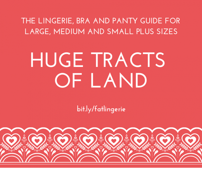 Huge Tracts Of Land The Lingerie Bra And Panty Guide For Large